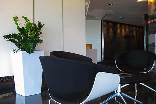Meeting area next to plants
