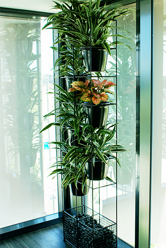 Tall plant feature